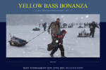 Yellow Bass Bonanza